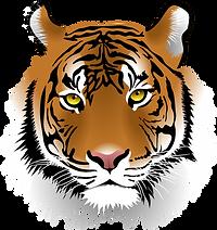 Mitchell Tiger Mascot