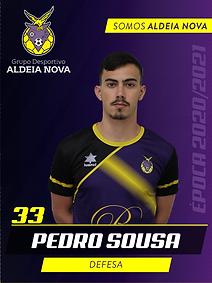 Pedro Sousa.png