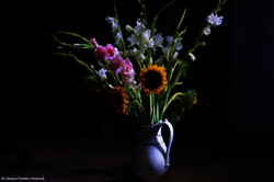 LP+Night+Bouquet+for+web.jpg