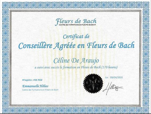 certificat_agréee.JPG