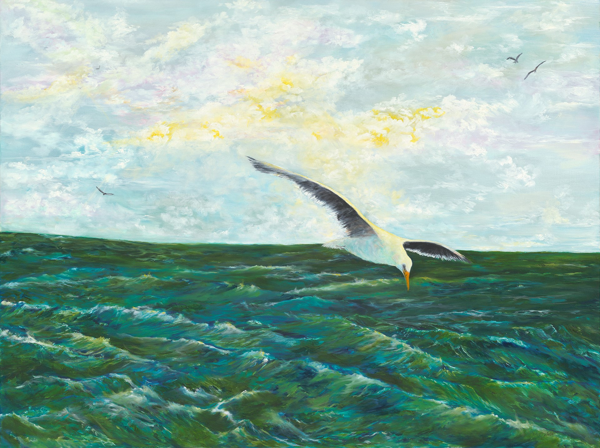 Seagulll and Sea
