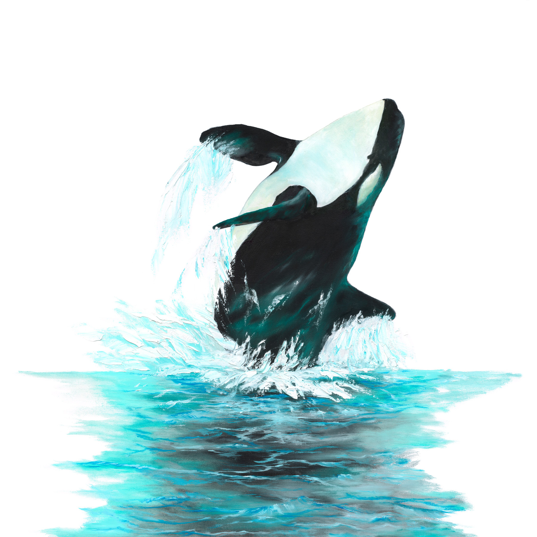 Whale I - 1st in my series of Breaching