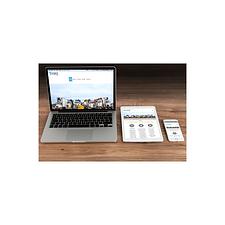 websample.png