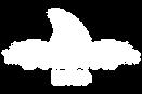 bullfish-logo-white.png