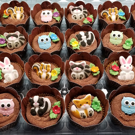 Wooland Babies Matching Cupcakes