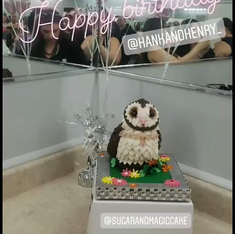Darling Little Owl Cake