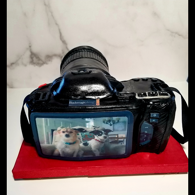 100% Edible Camera Cake with couples pets printed on edible paper