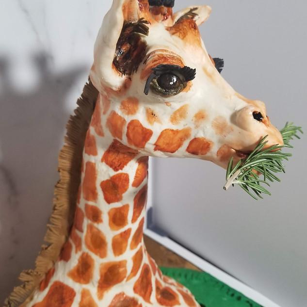 Baby Giraffe Cake Details