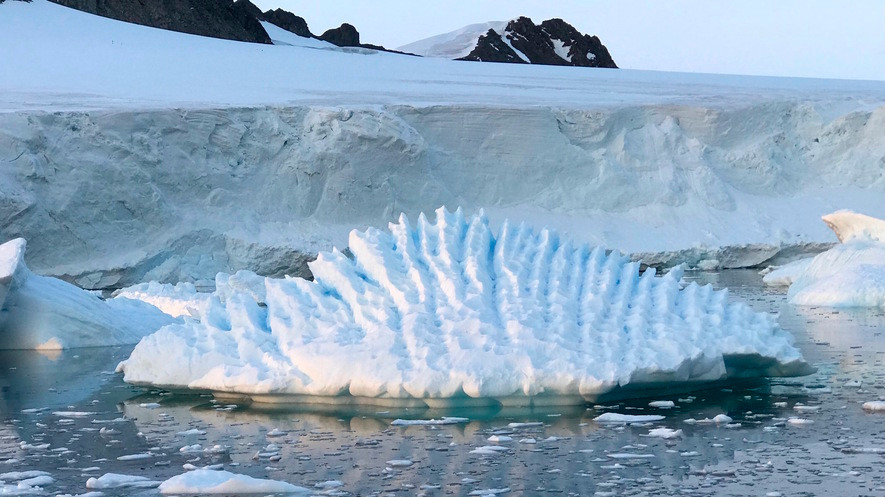 In a study released on 13 June, experts said the melting of Antarctica is accelerating at an alarming rate.