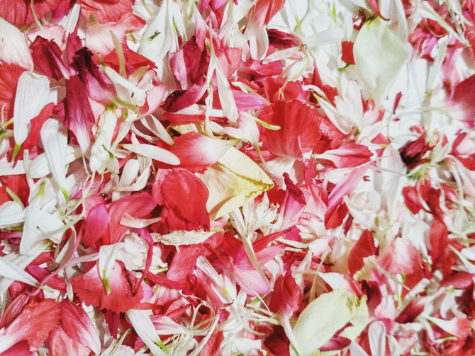 DIY Wedding-How to make Petal Confetti Tutorial