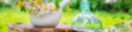 Natureilkunde thalwil zürich massage zürich thalwi