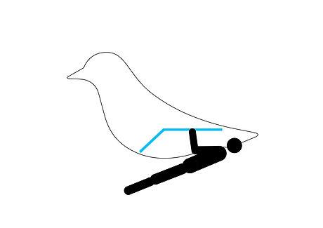 soutuvaakatasossa_gritbird.jpg