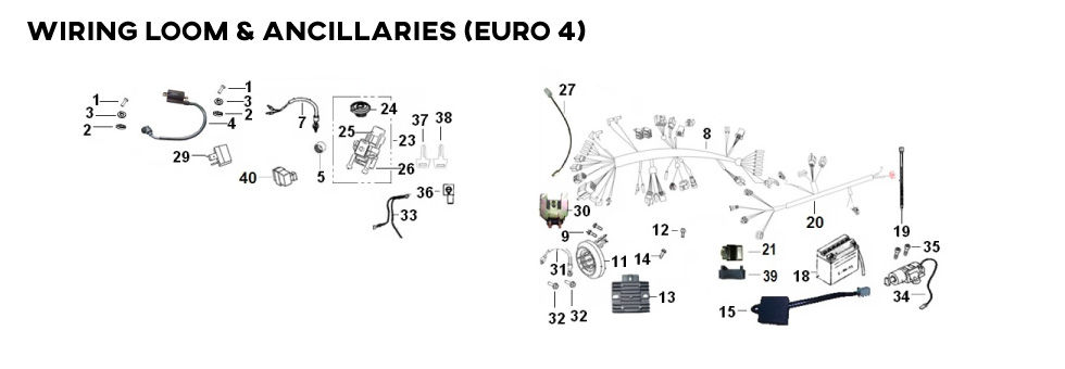 Wiring-Loom-and-Ancilliaries-(Euro-4)-(9