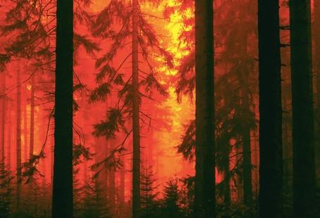 כיבוי שריפות באמצעות רחפנים