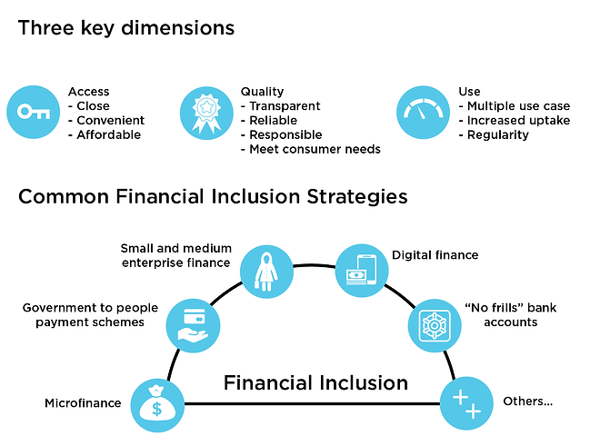 Common financial inclusion strategies-07