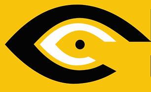 brighteye eye yellow logo.JPG