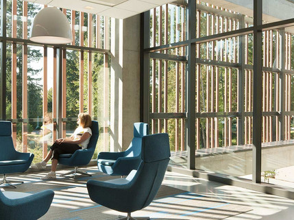 Find Out 2020 Interior Design Trend: Biophilic Design