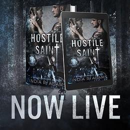 REVIEW - Hostile Saint by India R Adams
