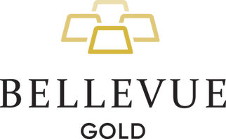 Belevue-Logo-Home-Page.png