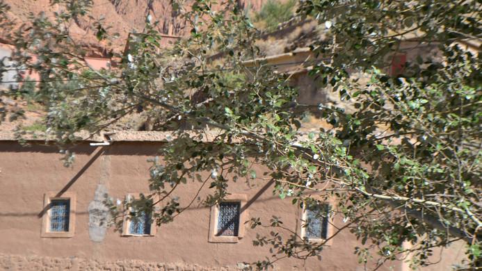maison chemin , vue de l,oued 2.JPG