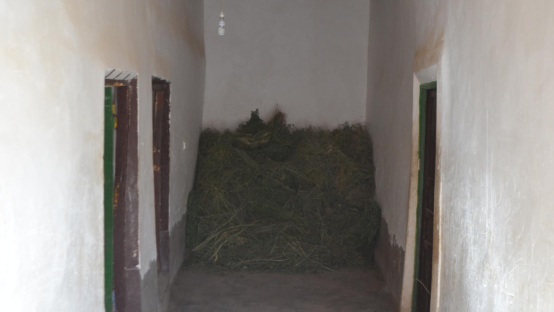 couloir petite maison.JPG