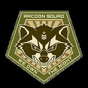 Racoon Cutout.png