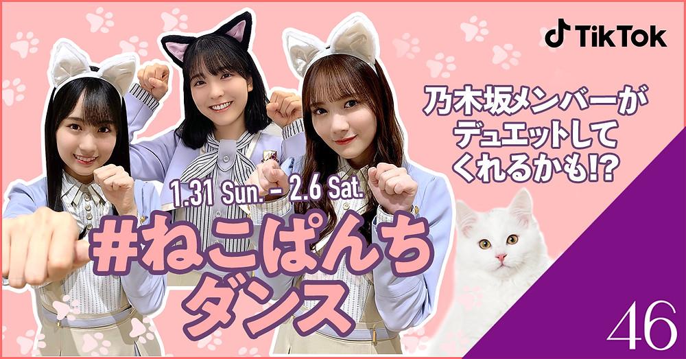 TikTok、乃木坂46と「#ねこぱんちダンス」チャレンジ開催!