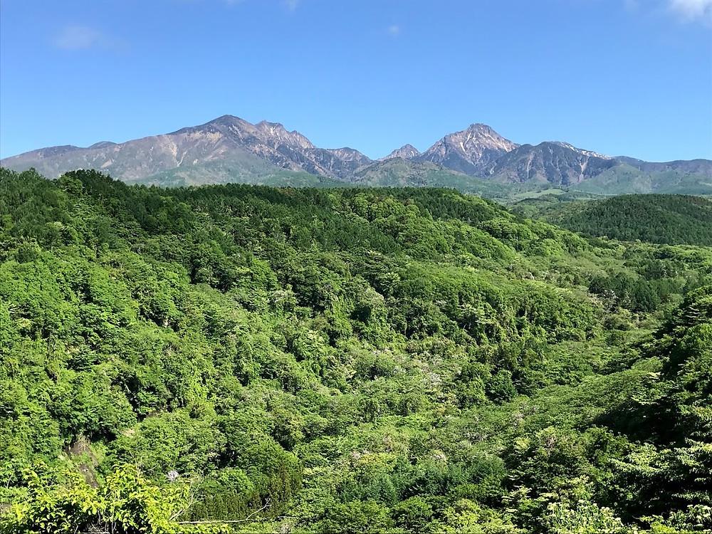 森の中のコワーキングスペース「清里フォーレスト(FOR'rest)」誕生!