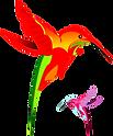 hummingbirds graphic