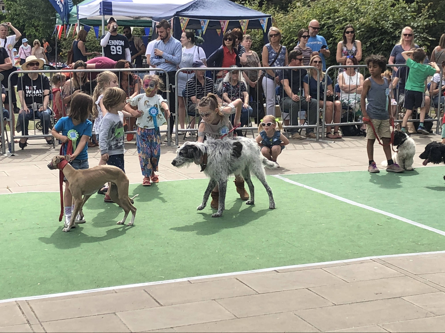 A Dog Show at the Diamond Jubilee Gardens