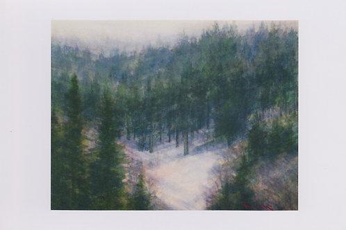 絵葉書『朔北の森』