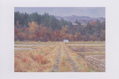 絵葉書『農機具小屋』