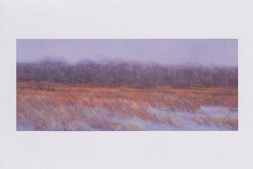 絵葉書『霧の林』