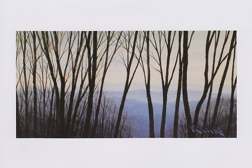 絵葉書『樹間』