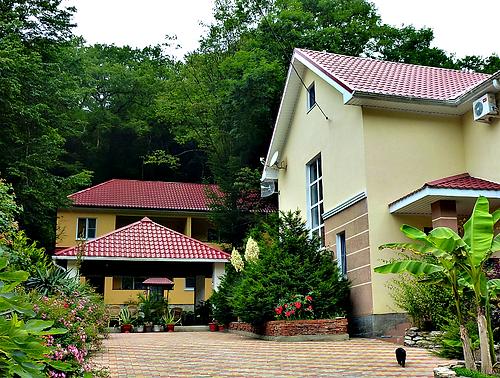 Гостевой дом Лесной. Море, отдых в Бетте