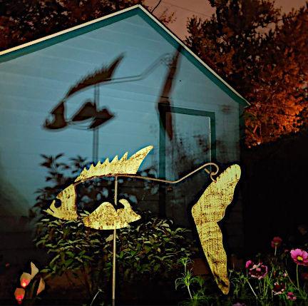 Green-Rusty-Fish-Shadow.jpg