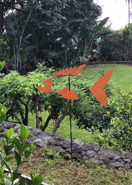 Orange Rusty in Hawaii.jpg