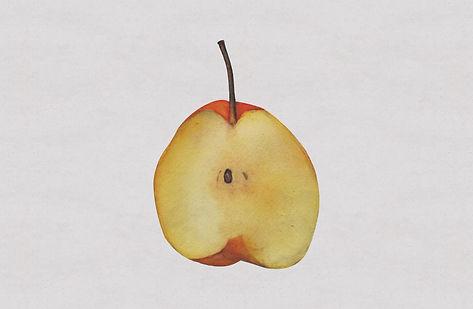 2一个梨子.jpg