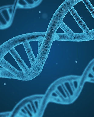ADN Cáncer.jpg
