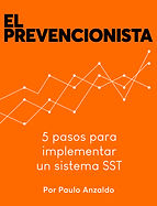 El prevencionista - Paulo Anzaldo.jpg