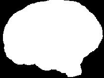 cerebroo.png