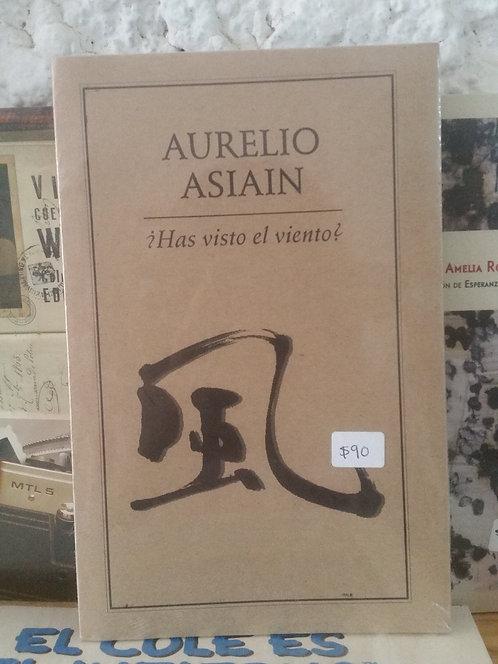 ¿Has visto el viento?/Aurelio Asiain