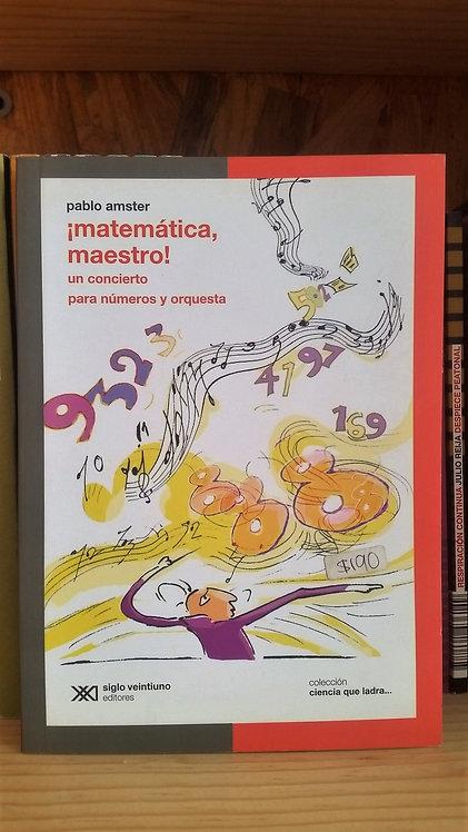 ¡Matemática, maestro!/Pablo Amster