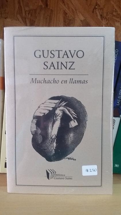 Muchacho en llamas/Gustavo Sainz