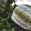 Thumbnail: Marsh marigold Hat