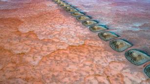 Steeping Stones - Pink Lake