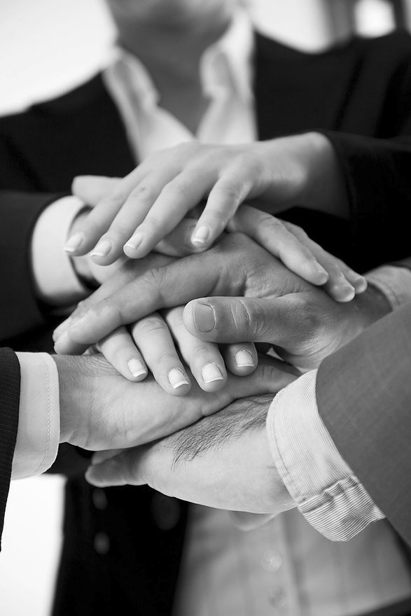 Il nostro staff si affianca spesso ai professionisti indicati dallo stesso committente, all'architetto o all'ingegnere di fiducia che supportiamo nelle fasi di esecuzione.