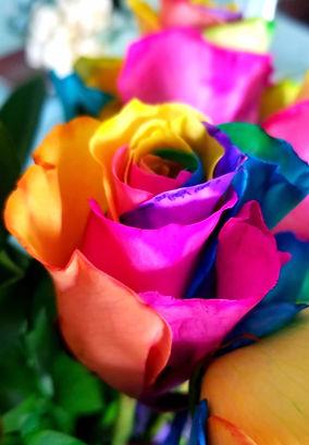 flowers-CGN4963_edited.jpg