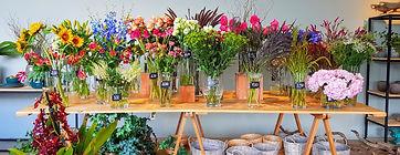Manual tecnico das 70 flores e folhagens