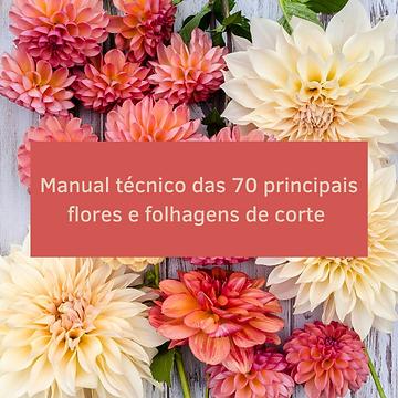 Capa_manual_tecnico.png